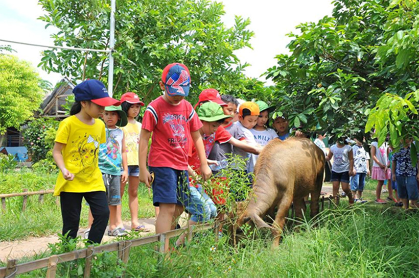 Kham pha Erahouse 08 Khám phá trang trại giáo dục Erahouse