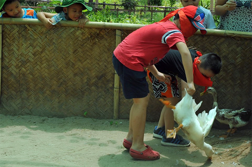 Kham pha Erahouse 11 Khám phá trang trại giáo dục Erahouse