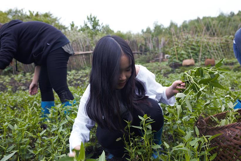 Cuoc thi nau an giua nui rung 4 Cuộc thi nấu ăn ở giữa núi rừng