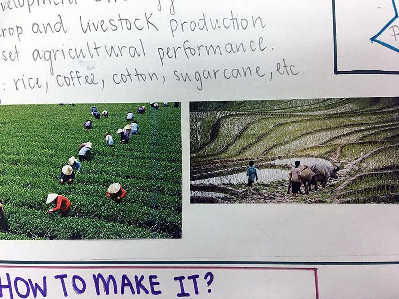 """""""Food - where does it come from?"""" - Lát cắt của dự án trường học hợp tác Quốc tế tích cực """"Food – where does it come from?"""" – Lát cắt của dự án trường học hợp tác Quốc tế tích cực"""