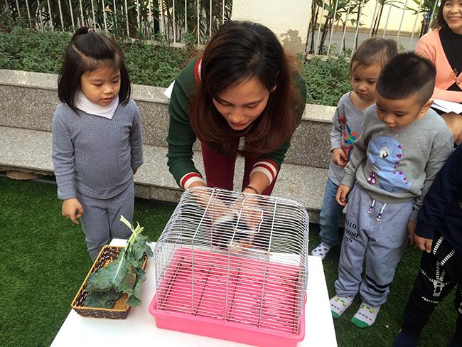 Boi duong tinh yeu thuong dong vat 1.4 Bồi dưỡng tình yêu thương loài vật cho trẻ