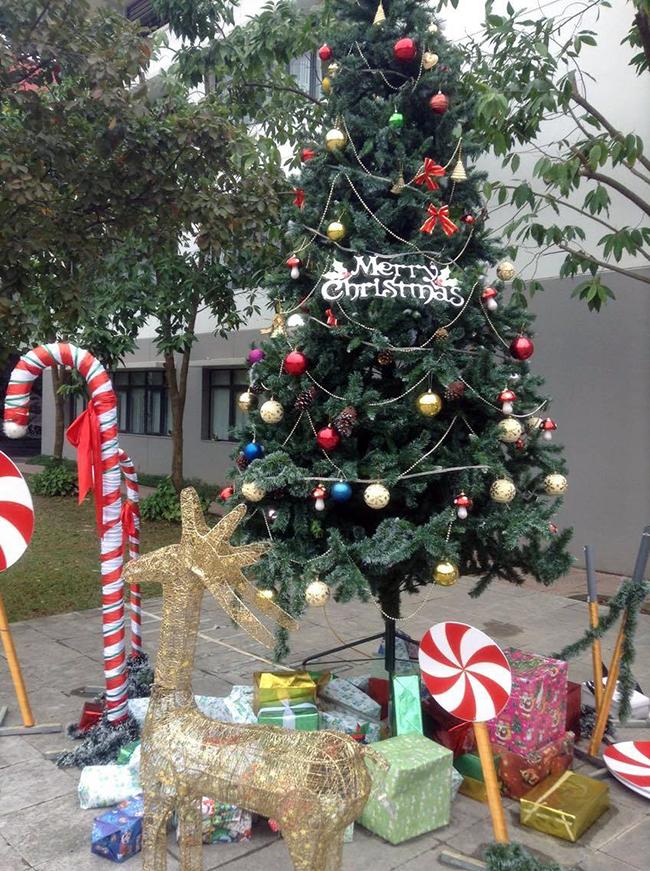 Mot mua giang sinh o HA 1 Một mùa Giáng sinh ở Hanoi Academy