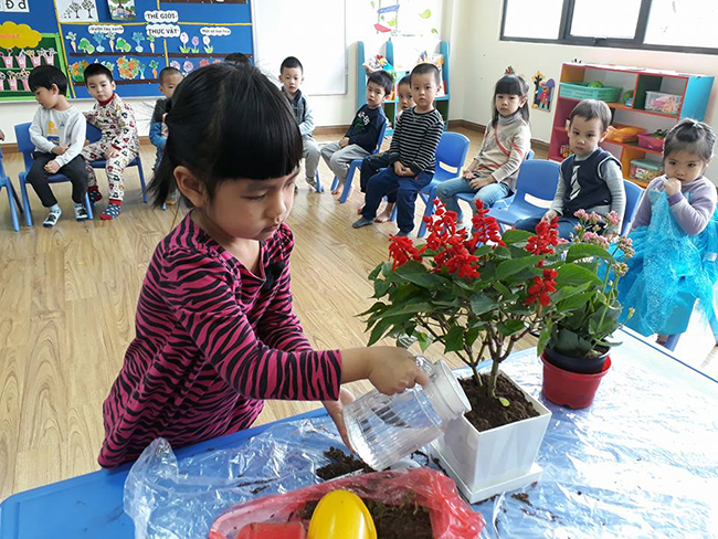 """The gioi thuc vat 10 Các bé lớp Kangaroo với chủ điểm """"Thế giới thực vật"""""""
