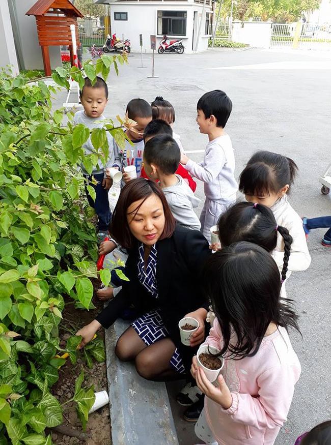 """The gioi thuc vat 11 Các bé lớp Kangaroo với chủ điểm """"Thế giới thực vật"""""""