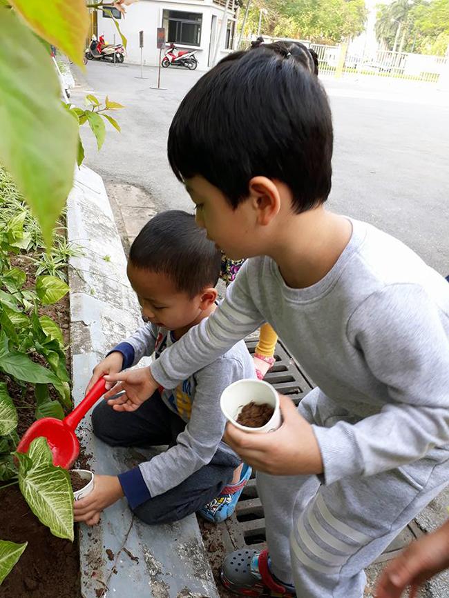 """The gioi thuc vat 13 Các bé lớp Kangaroo với chủ điểm """"Thế giới thực vật"""""""