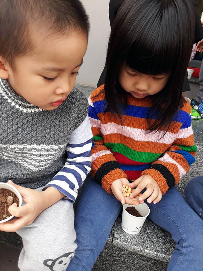 """The gioi thuc vat 17 Các bé lớp Kangaroo với chủ điểm """"Thế giới thực vật"""""""