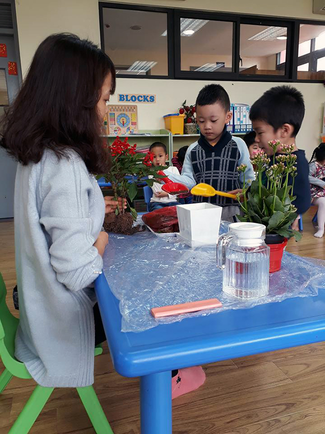 """The gioi thuc vat 5 Các bé lớp Kangaroo với chủ điểm """"Thế giới thực vật"""""""