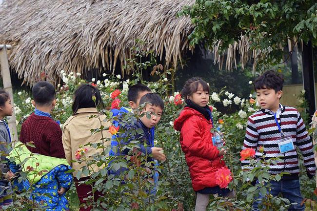 """Chuyen tham quan thung lung hoa 2 Chuyến thăm quan:"""" Thung lũng hoa Hồ Tây"""" của các bé khối mầm non"""