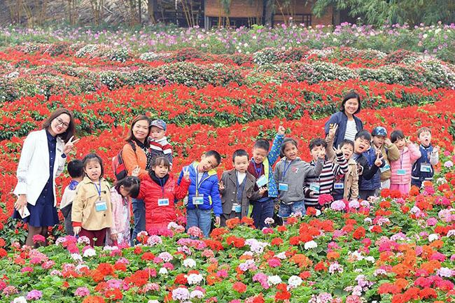 """Chuyen tham quan thung lung hoa 17 Chuyến thăm quan:"""" Thung lũng hoa Hồ Tây"""" của các bé khối mầm non"""