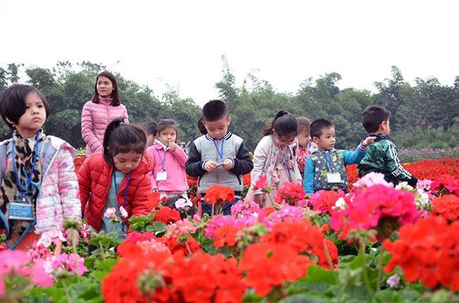 """Chuyen tham quan thung lung hoa 3 Chuyến thăm quan:"""" Thung lũng hoa Hồ Tây"""" của các bé khối mầm non"""