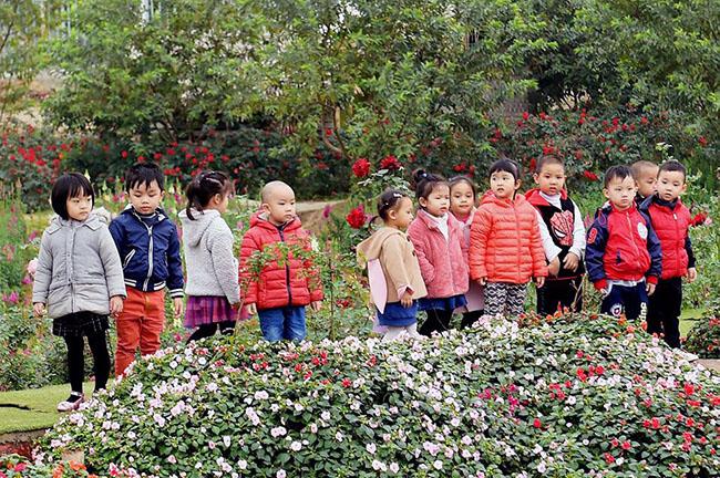 """Chuyen tham quan thung lung hoa 9 Chuyến thăm quan:"""" Thung lũng hoa Hồ Tây"""" của các bé khối mầm non"""