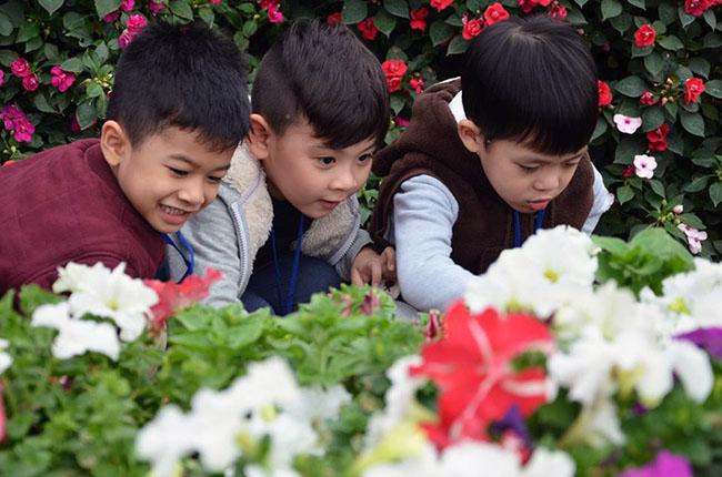 """Chuyen tham quan thung lung hoa 1 Chuyến thăm quan:"""" Thung lũng hoa Hồ Tây"""" của các bé khối mầm non"""