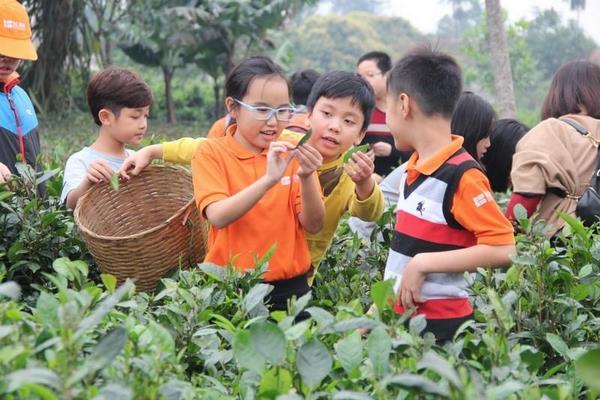 trường quốc tế Quận Long Biên 2 Có nên cho con học trường quốc tế quận Long Biên?