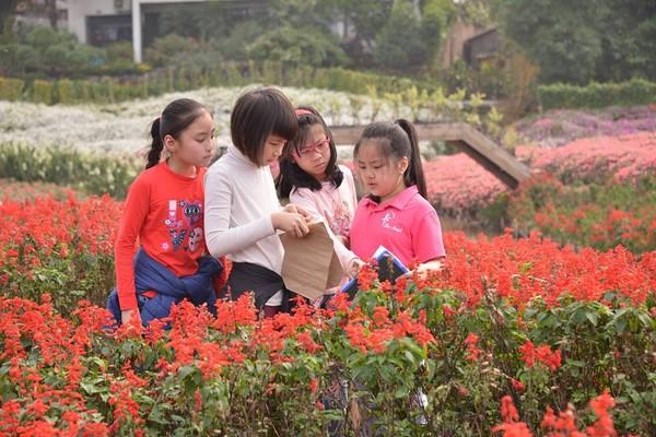 trường quốc tế mỹ hà nội 4 Có nên cho con theo học trường quốc tế Mỹ Hà Nội?