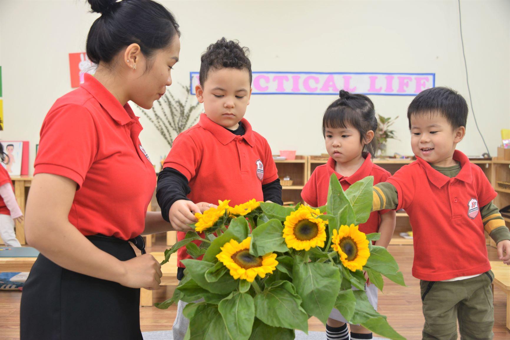 Một ngày tại Hanoi Academy của con Trang chủ